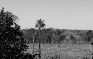 Tierra_Paraguay